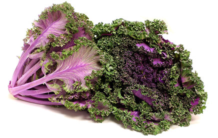 ผัก Kale
